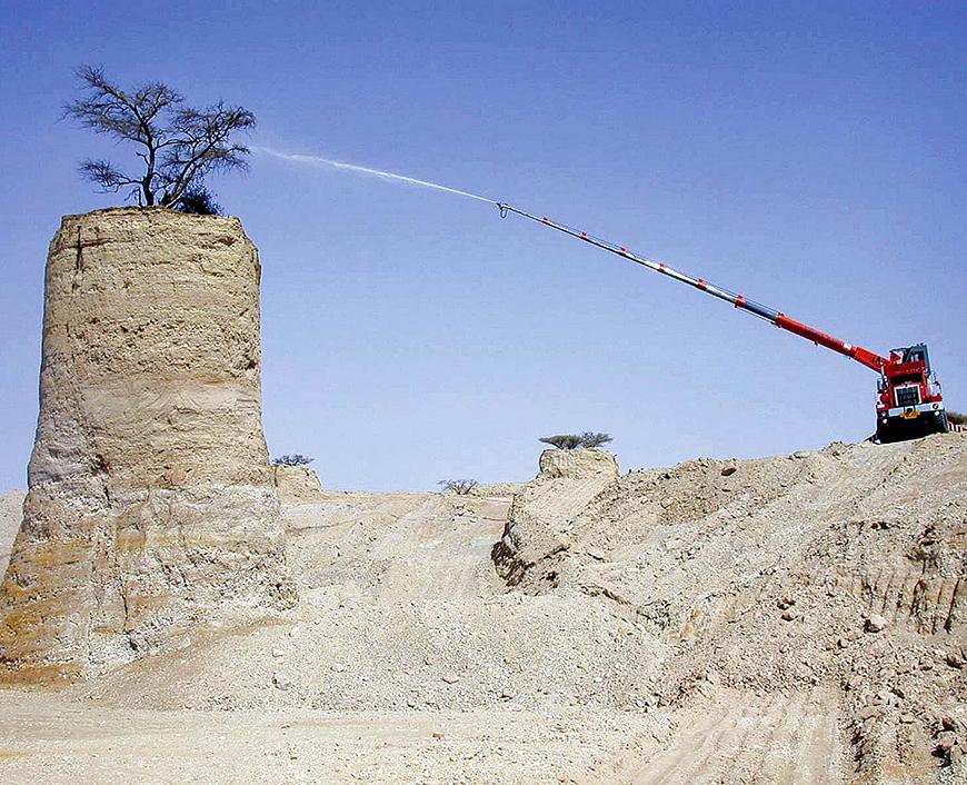 Environnement: construction d'une route dans le désert d'Arava et sauvegarde d'un arbre