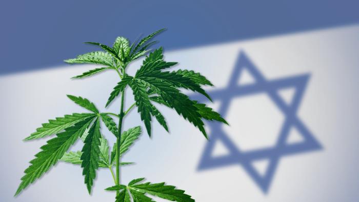 L'engouement israélien pour le cannabis