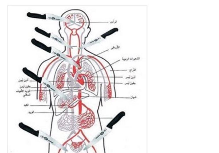 Schéma anatomique posté sur Facebook par Gazan Zahran Barbah le 8 octobre 2015, montrant ls parties du corps à viser pour porter des coups mortels (Courtesy MEMRI)