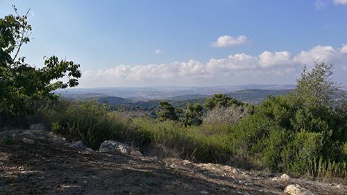 Vue depuis le kibboutz Sasa